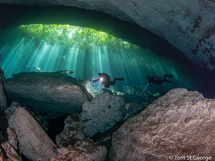 Underwater photo of diver in cenote